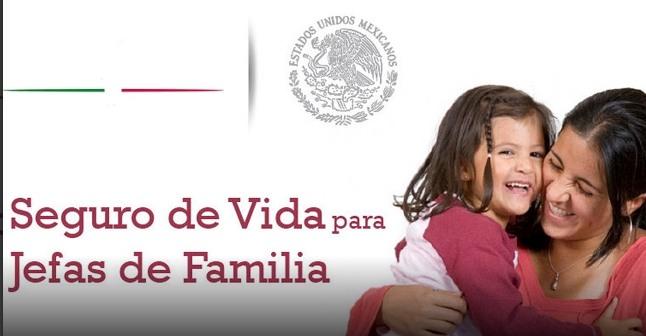 seguro de vida para jefas de familia