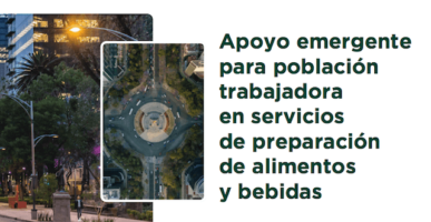 Resultados del Apoyo económico para Trabajadores de Restaurantes de la CDMX